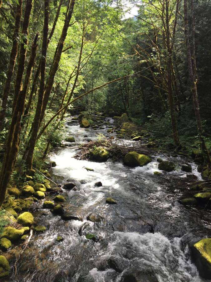Backpacking in the Pacific Northwest - Day One or One (Really Long) Day 02